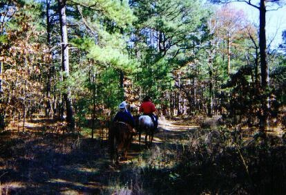 Cedar Lake Equestrian Trails Ok Images Frompo