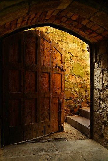Wine cellar door by trudy