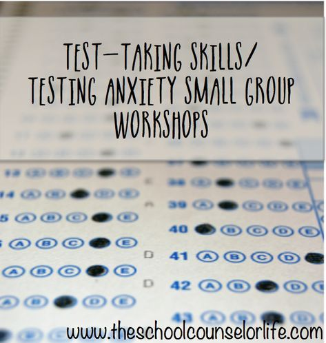 School Counselor Test Taking Skills / Testing Anxiety Small