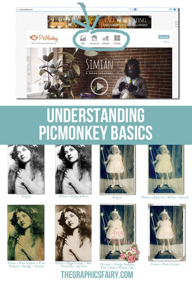 This post will help with understanding PicMonkey basics, what PicMonkey is, how to get started, and a little about the different versions (free and Royale). #pinyourlove and #picmonkey