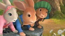 Peter Rabbit Song