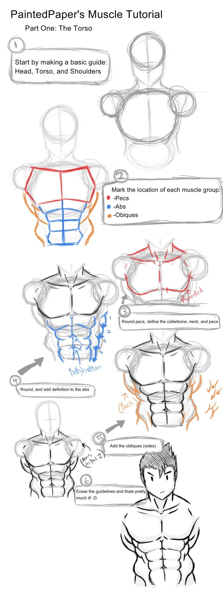 Big Muscles Tutorial - Part 1 by paintedpaper on DeviantArt