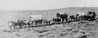 Image result for the oregon trail