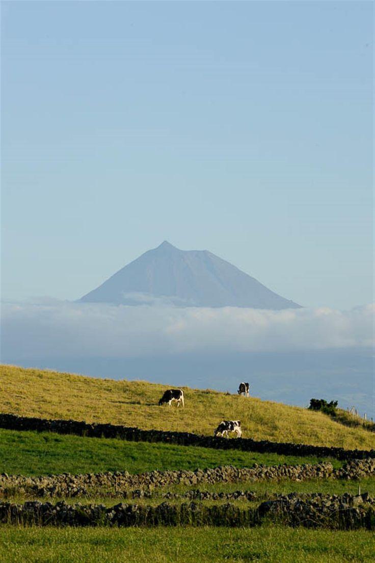 Crónicas da Atlântida – Açores | 9 Ilhas | 9 Meses - Ilha do Pico