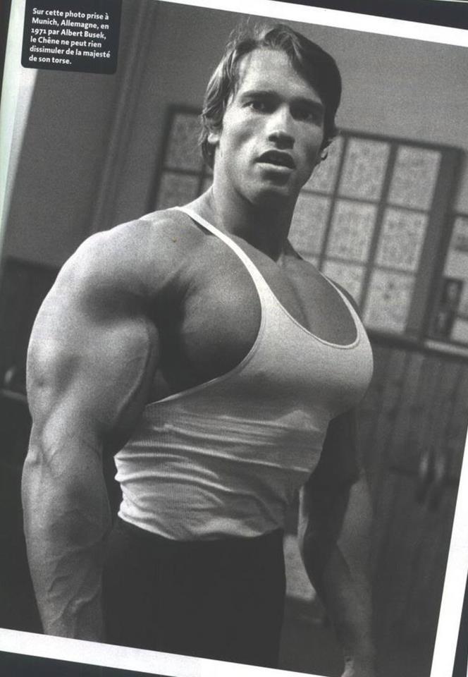 32 best Old School images on Pinterest Bodybuilding, Bodybuilding - new arnold blueprint app