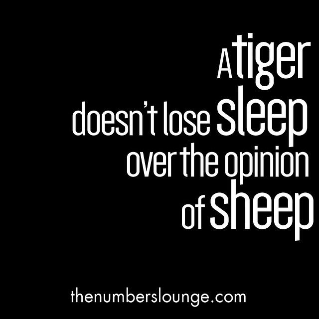 Know why you're doing what you're doing, find your trusted advisors and ignore the sheep! Oh and practice your roar ;) #thenumberslounge #business #entrepreneur #entrepreneurlife