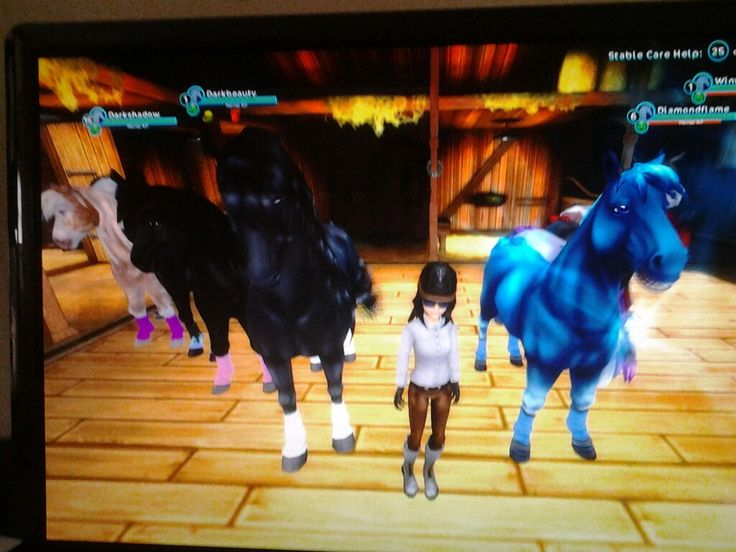 Me and mah horses xD