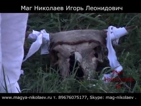 Кладбищенский приворот на череп быка. Эффективный приворот через кладбищ...