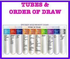 Best 25 Phlebotomy Order Of Draw Ideas On Pinterest