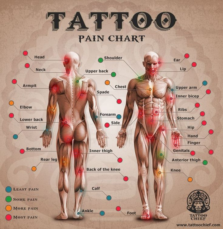 Image result for tattoo pain chart