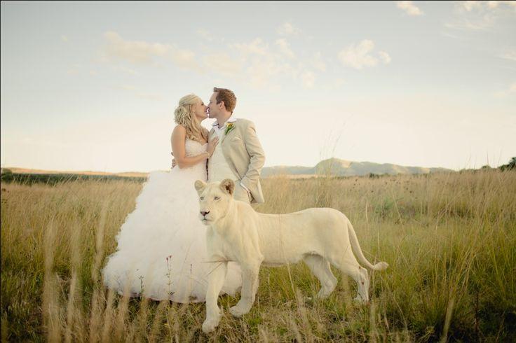 The Ranch - Wedding Venue