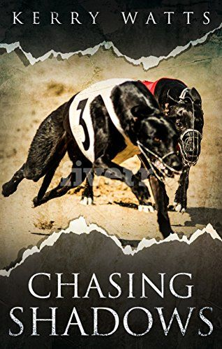 #Book Review of #ChasingShadows from #ReadersFavorite  Reviewed by Erin Nicole Cochran for Readers' Favorite