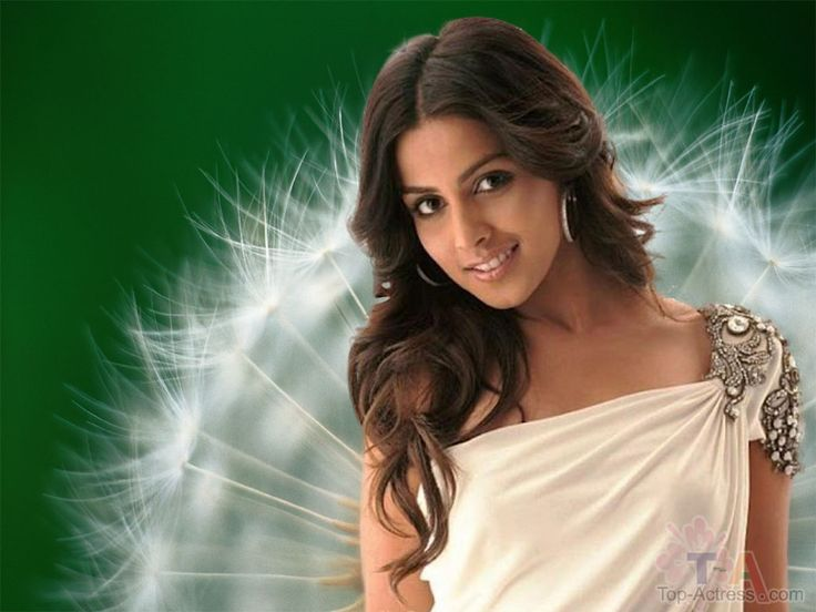 Download Latest Wallpapers Of Bollywood Actresses 2012 Gallery