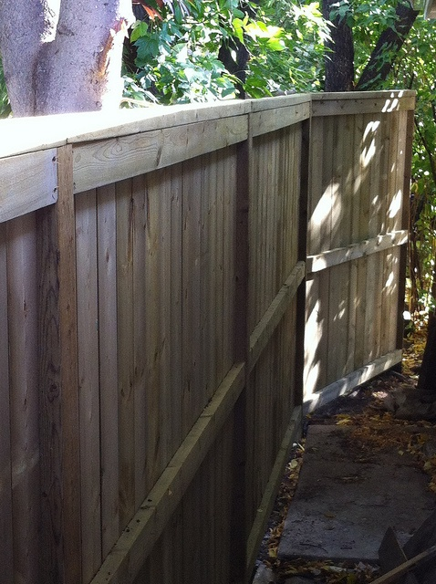 66 Best Calgary Fence By Deckrative Designs Images On