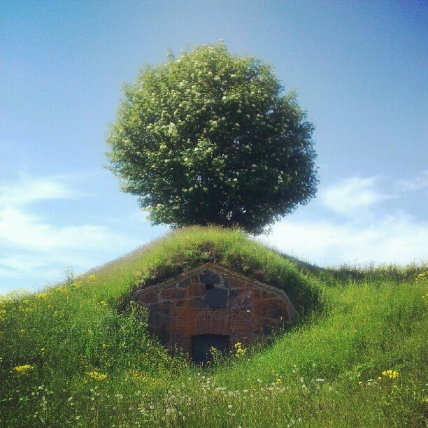 'Hobbit house' home on Suomenlinna fortress island of Helsinki
