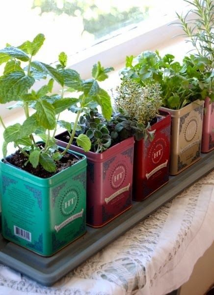 Herb Gardens for Small Spaces