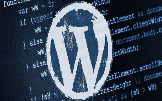 WordPress Fonksiyonları