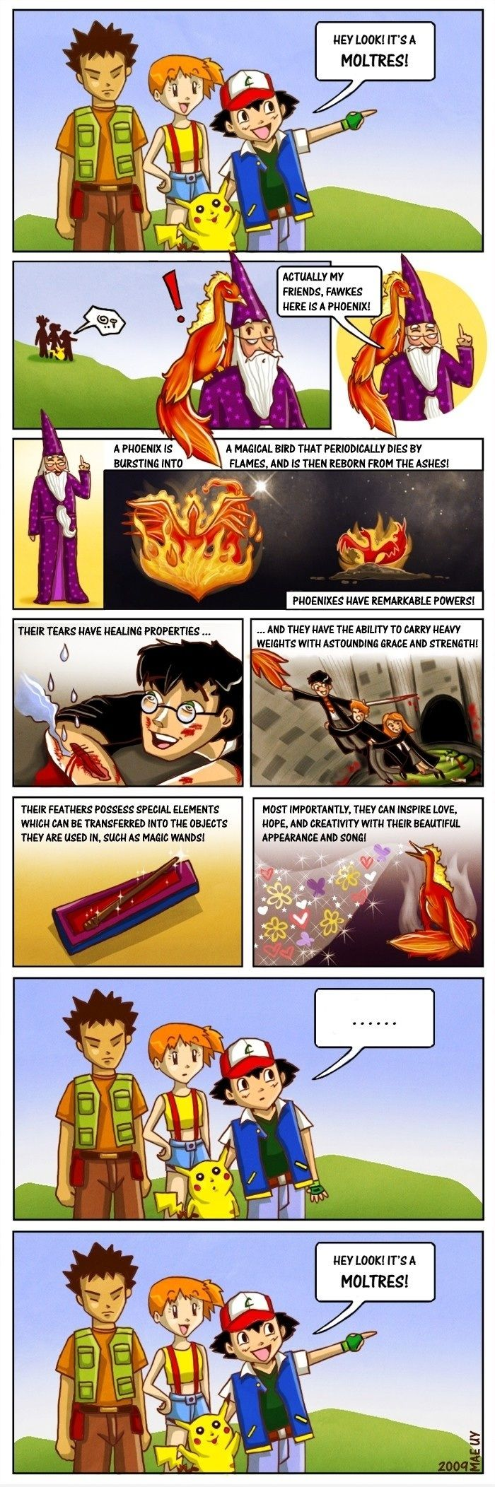 Hey look! Its a Moltres! - funny pictures - funny photos - funny images - funny pics - funny quotes - funny animals @ humor