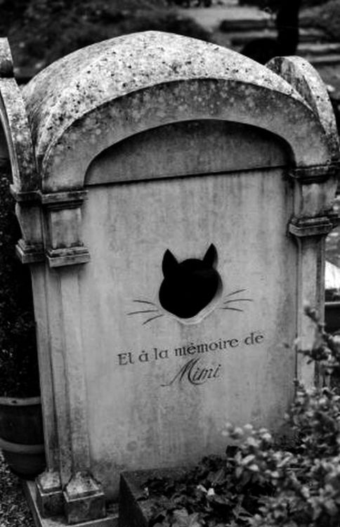 Oldest Pet Cemetery in the world, in the suburbs of Paris.
