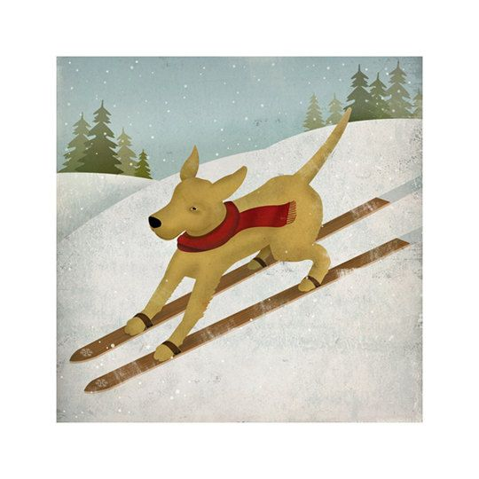 YELLOW DOG Ski Company Labrador Retriever Graphic by nativevermont, $39.00