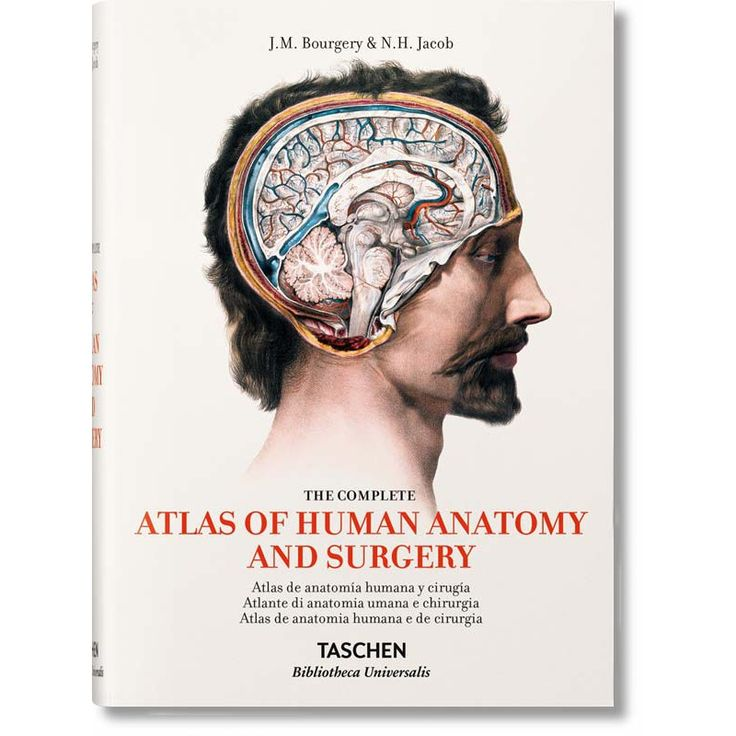 BOURGERY. ATLAS OF HUMAN ANATOMY AND SURGERY (IEP) - Taschen | Libri.it