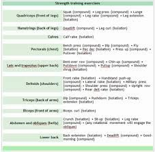 image result for opposing muscles  strength training