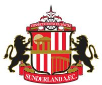 What's important to me: I support Sunderland AFC and like to know how the team are doing and what the score is after every game. I enjoy watching them play so if I can see them on TV or even better at the Stadium of Light this would make me very happy. Make sure I have my scarf!