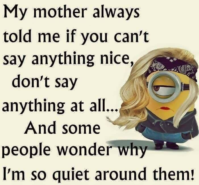 Funny Jokes Quotes: My Mother Always Told Me If You Can't Say Anything Nice