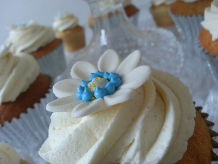 Blue and Cream Vanilla Cupcakes