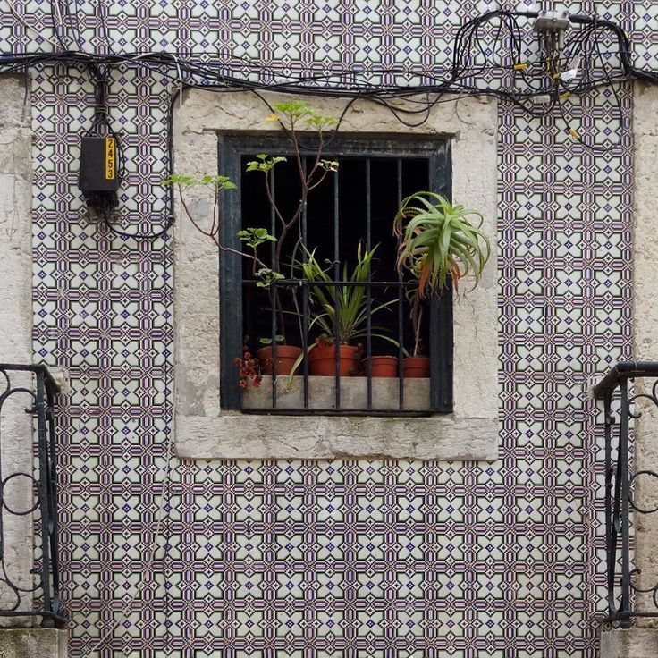 Travessa da Laranjeira - Lisboa  #azulejo #azulejos #tile #tiles #pixel #patterns #design #art #window #urbanart #design #azulejospadrao #amantedelosazulejos #azulejosdeportugal #azulejocollector #portugaldenorteasul #wanderlust #ihavethisthingwithtiles #lisboa #portugal #lisbonlovers #visitportugal #doorsandwindows #streetphotography #gerador #architecture #p3top #vintage #travel #super_portugal #mappingourtiles by azulejospadrao