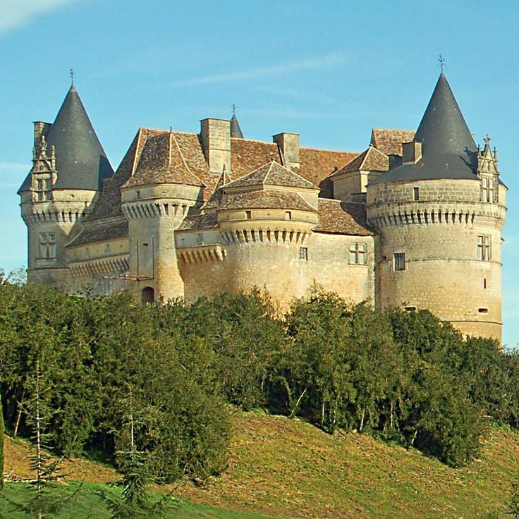 3257 best images about castles chateaux on pinterest for Chateau beaumont