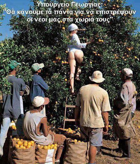 Το αστείο μου mailbox!: FW: Να πως θα έρθει η ανάπτυξη!