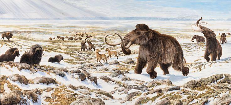 Ice Age animals of Beringia by George 'Rinaldo' Teichmann