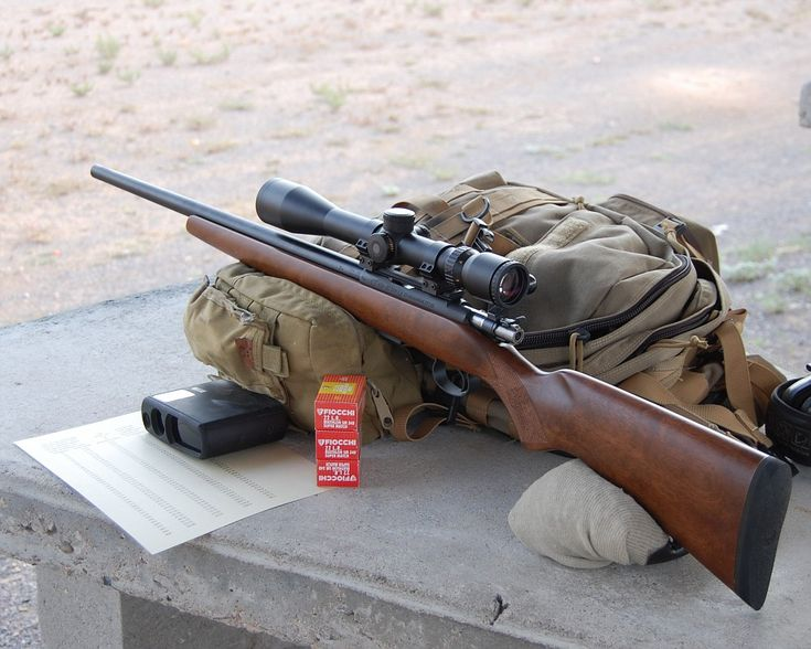 Best Rifle 22lr Survival