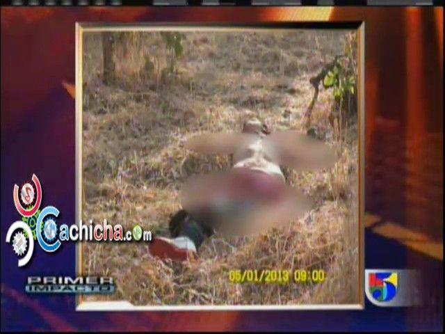 Capturan a 25 perros salvajes en México #video - Cachicha.com