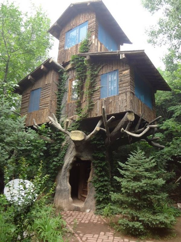 Image on The Owner-Builder Network  http://theownerbuildernetwork.co/social-gallery/dream-tree-loft-playhouse-6-7