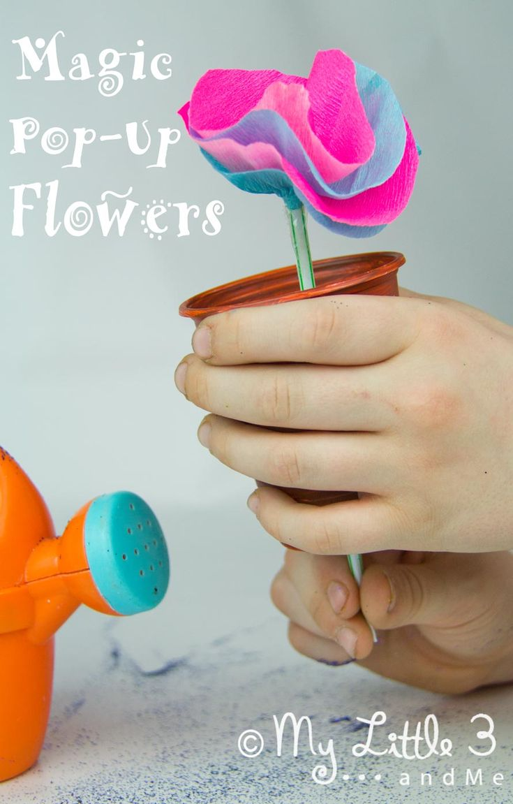This Magic Pop-Up Flower nursery rhyme craft is a great interactive way to bring Mary Mary Quite Contrary to life.