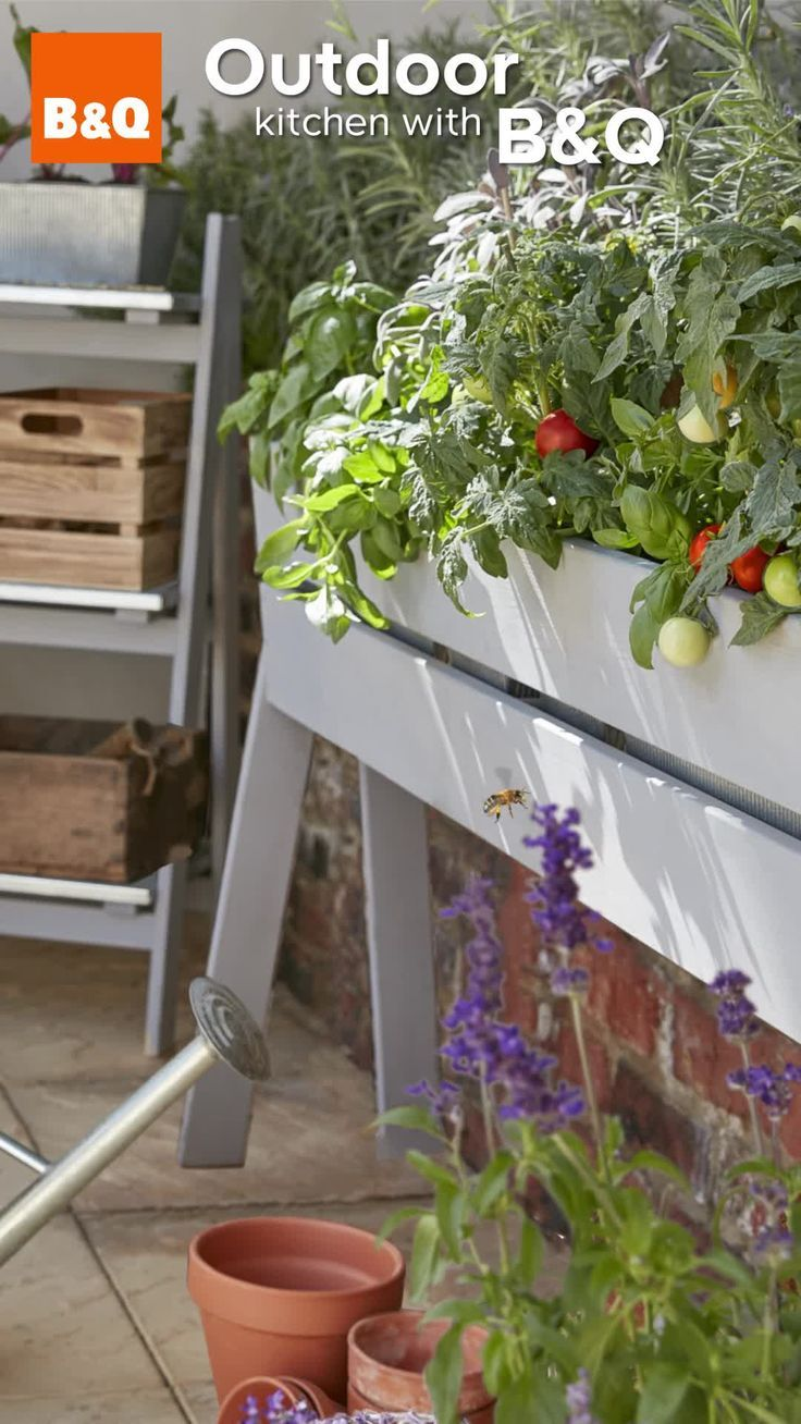 With B Q You Can Transform A Winter Worn Garden In To A Beautiful Oasis Enjoy W Garden Bulbs Plants Organic Vegetable Garden