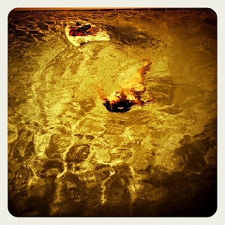 DESPINA THEODORIDOU-KRENTS: i am swimming! / κολυμπάω!