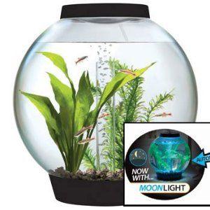 baby biOrb 4-Gallon Moonlight Aquarium with Light Fixture, Black: Aquariums test Kit, Gifts for Fish Lovers