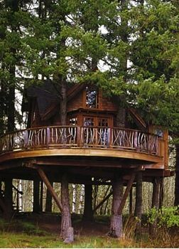 treehouse homes