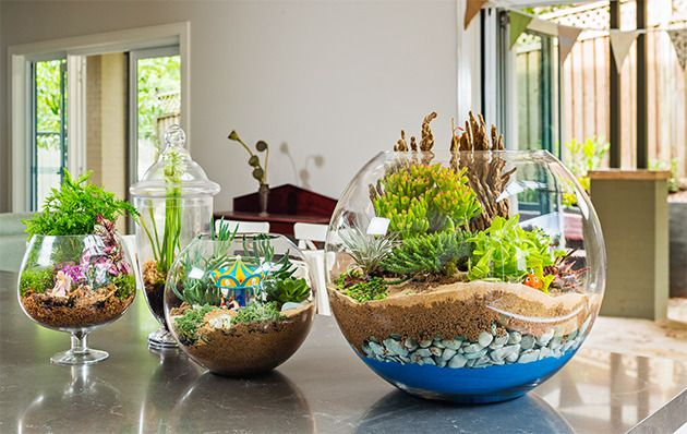 How to make a terrarium: Create a mini garden in a glass bowl- it's the ultimate small garden!