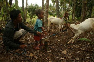 Microfinance project comes to Bali's Nusa Penida island