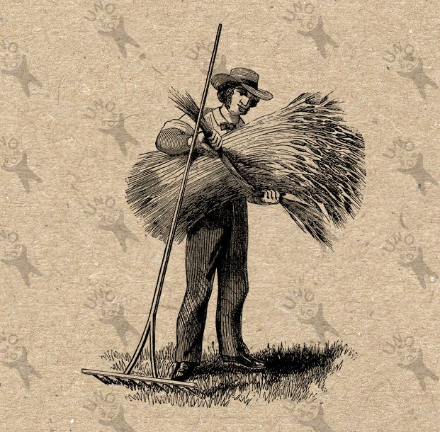 Vintage retro drawing image Farmer Man Harvest Instant Download Digital printable clipart graphic -  iron on, transfer, burlap etc HQ300dpi by UnoPrint on Etsy