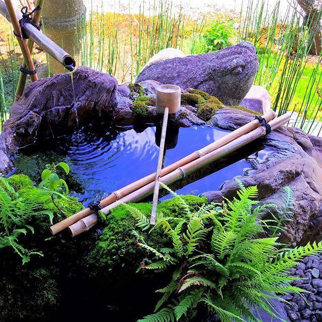 Wish you all a relaxing Friday 👍 // Mindenkinek kellemes pénteket kívánunk 👍 #szegedbudokan #martialarts #academy #szeged #harcművészet #seibukan #jujutsu #seibukanjujutsu  #void #elements #nature #water #lovewhatyoudo #mylife #japan #japanese #garden #harmony #inspiration #friday #relax #calm #world #travel #shrine #shinto #spirit #budo