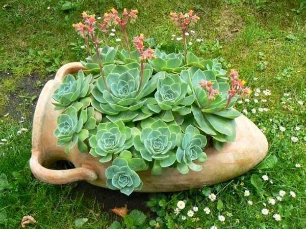 ideias de mini jardim:12 Lindas Ideias para Criar Vasos Reciclados para o Jardim!