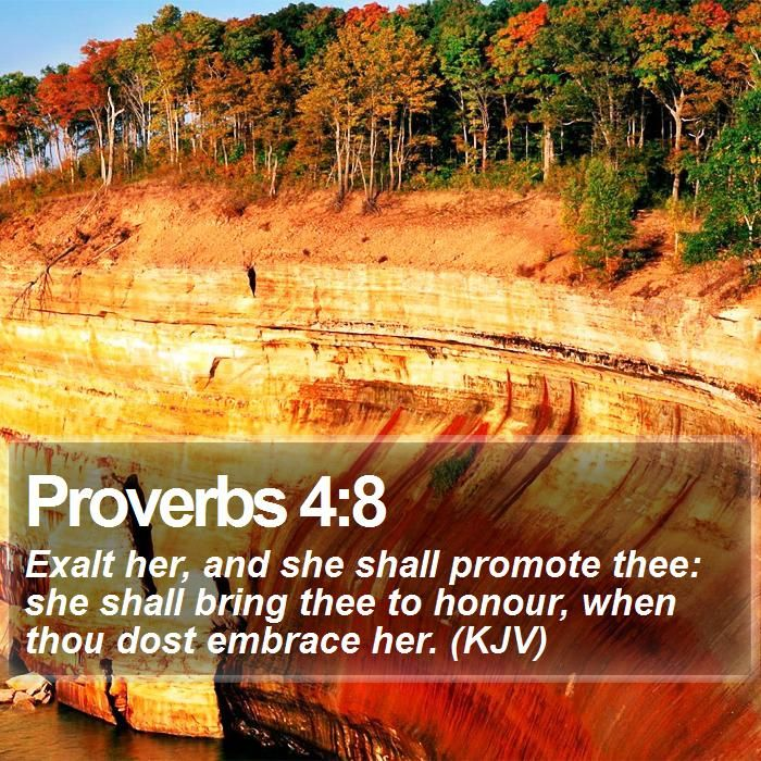 Proverbs 29 4 – Quotes of the Day