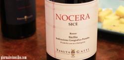 Il Nocera: antico vitigno di Sicilia - Messina.