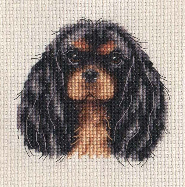 Black & Tan CAVALIER KING CHARLES SPANIEL ~ Dog, Full counted cross stitch kit | eBay