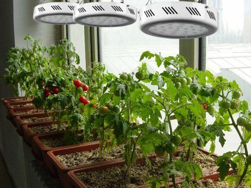 TaoTronics TT-GL21 LED Grow Light is perfect for hydroponic garden greenhouses and ideal for garden growth in home or commercial gardens. TaoTronics Plant Grow Lights can grow any indoor gardening an...